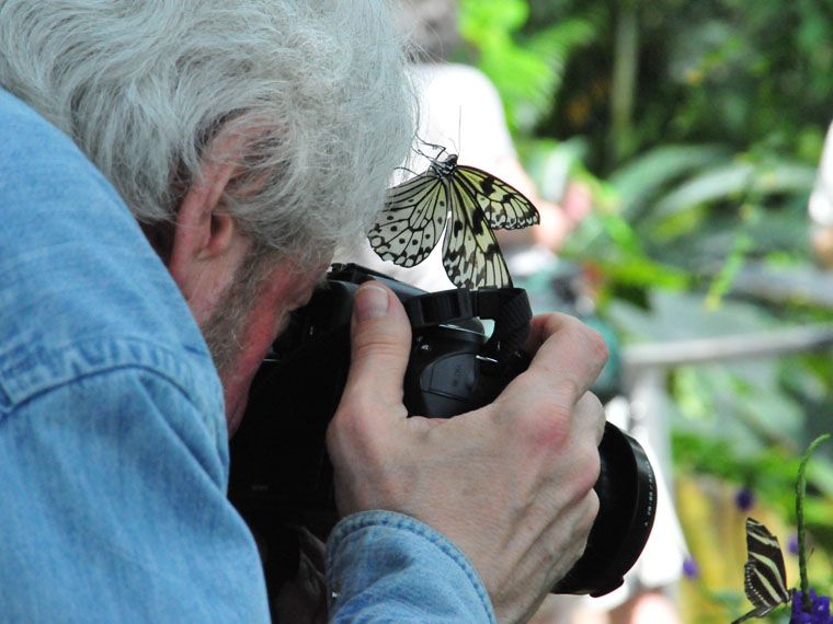 Photographing the Butterfly